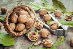Walnuts, nutcracker and basket on old wooden table Stock Image