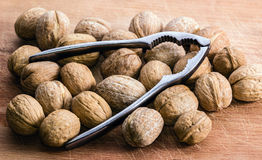 Walnuts and Nutcracker on a Cutting Board. Walnuts and a nutcracker on a wooden cutting board Royalty Free Stock Images
