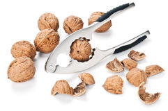 Walnuts and nutcracker isolated on white Royalty Free Stock Image