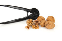 Walnuts with a nutcracker on a white background Stock Images