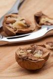 Walnuts and nutcracker. Stock Photography