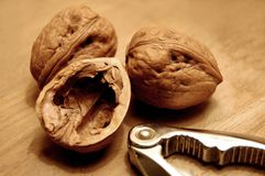 Walnuts and Nutcrackers. Three walnuts and nutcrackers macro shot Royalty Free Stock Images