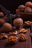 Walnuts and Nutcrackers Stock Image
