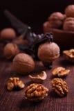Walnuts and Nutcrackers dragon Royalty Free Stock Image