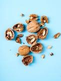 Walnuts. Nuts. Walnuts on a blue background Stock Image