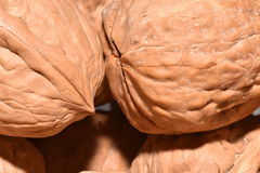 Walnuts. Nuts in their shell in macro photos Royalty Free Stock Image