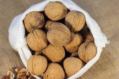The walnuts nuts vitamins for the brain. The walnuts in shell and peeled kernels royalty free stock photography