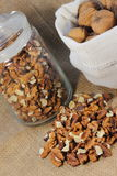 The walnuts nuts vitamins for the brain. The walnuts in shell and peeled kernels stock images