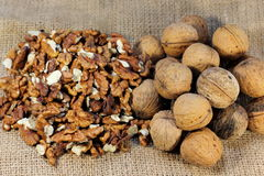 The walnuts nuts vitamins for the brain royalty free stock photos