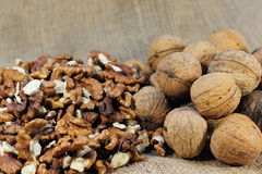 The walnuts nuts vitamins for the brain royalty free stock image