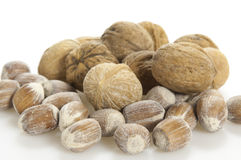Walnuts and nuts on white Stock Image