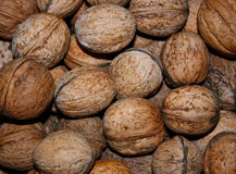 Walnuts in nutshell Royalty Free Stock Images