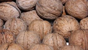 Walnuts in nutshell Stock Photography