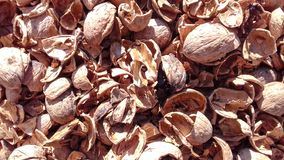 Walnuts nutshell natural dry fruit background Royalty Free Stock Photos