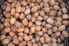 Walnuts in a nutshell. The texture may be used for printing on fabric or paper, as background and in web design stock photos