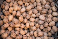 Walnuts in a nutshell. Stock Photos