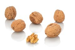 Walnuts with and without nutshell. White isolated stock image