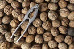 Walnuts and an old nut cracker as a background Stock Images