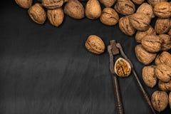 Walnuts with Old Nutcracker on a Blackboard Royalty Free Stock Photos