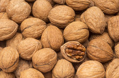 Walnuts with open nut Royalty Free Stock Image