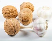 Walnuts and organic garlic . Royalty Free Stock Image