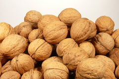 Walnuts over white Stock Images