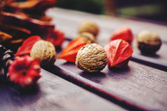 Walnuts and physalis. On the table Royalty Free Stock Photo