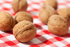 Walnuts on picnic tablecloth Stock Photography