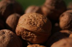 Walnuts in a pile stock images