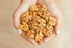 Nuts in hands Stock Photo
