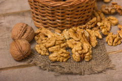 Walnuts Pile Stock Photography