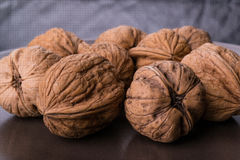 Walnuts. On a plate stock photography