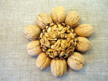 Walnuts. In plate on linen background stock photography