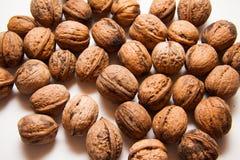 Walnuts Stock Image