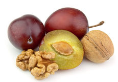 Walnuts and plums Stock Photography