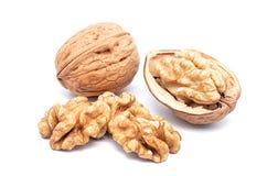 Walnuts 2 Stock Photography