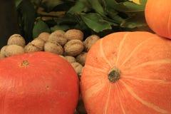 Walnuts pumpkin Stock Photo