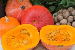 Walnuts pumpkin Stock Photography