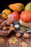 Walnuts, pumpkins and dry leaves royalty free stock photography