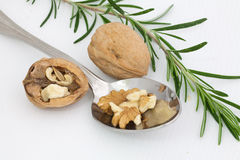 Walnuts with rosemary Royalty Free Stock Image