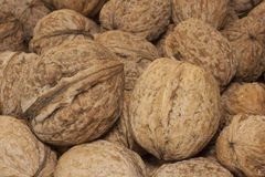Walnuts in a row on table top. Heap of walnuts on table Stock Image