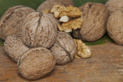 Walnuts in a row on table top. Group of walnuts on table top Royalty Free Stock Photos