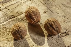 Walnuts on a rustic old wooden table. Three walnuts on a wooden table. Side view. Walnuts on a rustic old wooden table. Three walnuts on a wooden table Royalty Free Stock Image