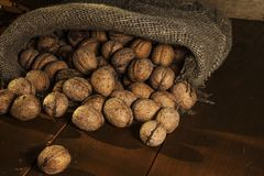 Walnuts on a rustic old wooden table. walnuts on a wooden table. Side view. Walnuts on a rustic old wooden table. Three walnuts on a wooden table Stock Photos