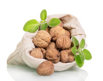 Walnuts in  sack from flax isolated on white background. Stock Images