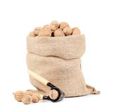 Walnuts in sack. Stock Photos