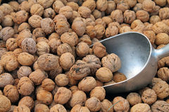 Walnuts For Sale Royalty Free Stock Photography