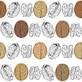 Walnuts. Seamless  pattern. Royalty Free Stock Photography