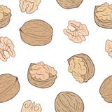 Walnuts seamless pattern Royalty Free Stock Photography