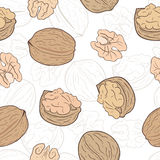 Walnuts seamless pattern Royalty Free Stock Image